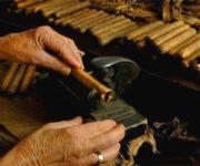 古巴雪茄烟制作